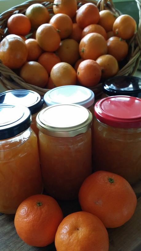 My Green Garden  Preserves workshop