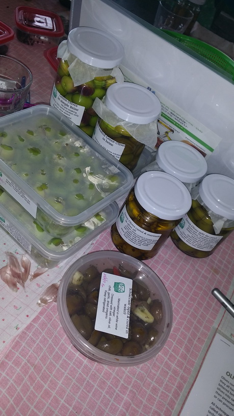 Some of the olives ready to eat and others to continue the olive pickling process at home