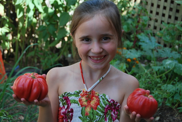 Growing Vegetable for Beginners