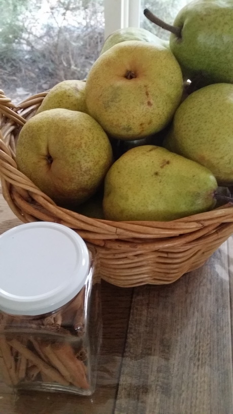 Fruits to use in My Green Garden preserving workshops