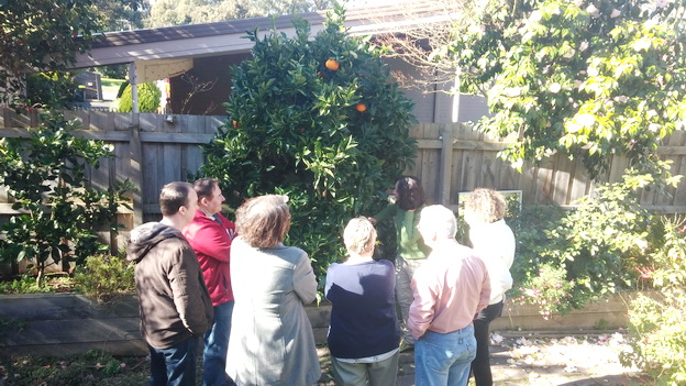My Green Garden Fruit Tree Workshops